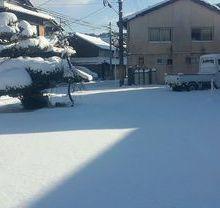信楽も雪の正月